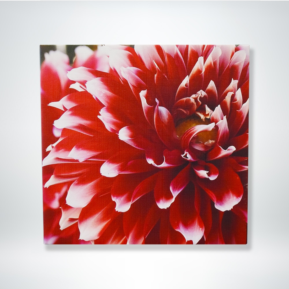 FunDeco custom canvas example of flower